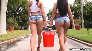 Big Ass,Blowjob,Brunette,Fucking,Latina,Outdoor,Wet