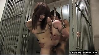 Amateur,Asian,BDSM,Big Ass,Big Boobs,Extreme,Hairy,Fucking