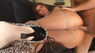 Anal,Big Ass,Big Boobs,Blowjob,Brunette,Creampie,Doggystyle,Fucking,Lingerie,Oiled